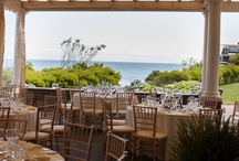 Beach wedding, seaside mermaid event