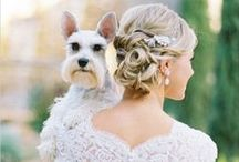 Puppy Love   Wedding Inspiration / How adorable is this board? Weddings are meant to be shared with the friends and family you love. For some of us, that includes a friend with big brown eyes, flapping ears and a wagging tail. We love how these brides shared their wedding with their dog. There are so many ways to include your canine companion into your special day and I mean, come on, what is cuter than a Frenchie wearing a tux?