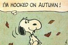 Lifestyle - Autumn / My favourite season.   Too many reasons why!