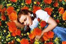 My favor color orange !!! / by Emerald ,,, Retromama!!