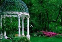 Outdoors / beautiful outdoors and garden displays!!    / by Sharon Emmons-Mason