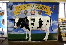 Snapshot of Chiba / Snapshot of Chiba