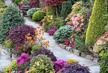 Landscape: Beautiful Landscape Creations / Landscape / by Judy Currier