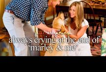 Marley & Me / the best movie ever ... I've cried during the last scene :'( really amazing