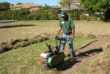 Lawn & Turf Removal / Here are some photos of the process to remove lawns.