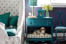 Pet Lovers Decor ~ Ideas for Our Furry Friends / Room decor, gifts and products for the pet lover. Fun ideas and projects inspired by pets and pet owners perfect for making your living space animal friendly.