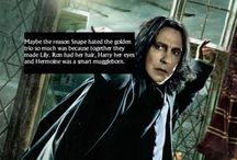 Harry potter <3 :) <3 / I've got a serious obsession with harry potter..... My family worry OH WELL once you're in the fandom you NEVER leave :3