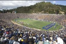 Cal Athletic Facilities  / California Golden Bears state of the art athletic facilities! #RollOnYouBears / by University of California Golden Bears