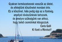 INSPIRÁCIÓK / IDÉZETEK CARLA GALLI : KI FIZETI A RÉVÉSZT? C.KÖNYVÉBŐL