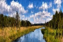 NATURE paintings / Nature paintings
