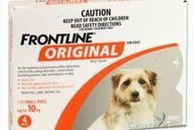 Ask the Vet / Vet Tips, FAQs, Pet Health, Healthy Pets, Pet Remedies