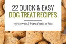 DIY Dog Treats / Healthy fun DIY treats for dogs.