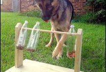 Make your own dog toys. / Easy to make diy dog toys.