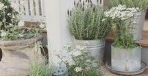 Outdoor Styling Ideas with Pots / Ideas to style your outside with pots...from classic to modern