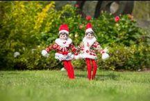 Elf on the Shelf / Oakley and Azalea's adventures around Airlie Gardens #EnchantedAirlie #AirlieGardens #Airlie #Elf #ElfOnTheShelf #ElfOnAShelf #Gardens
