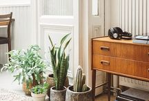 Casual Interiors / Casual Decor & Eclectic Style