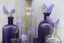 BOTTLES GREAT IDEAS ✿‿✿ / by Marilene F.Lourenço