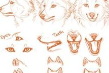 Animals&Pets&Furry // 動物