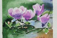 Watercolor / watercolor drawings