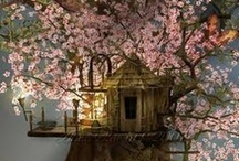ARCHITECTURE - Tree house / We all want one! For some of us, just not so high. / by Penny Nattress Moonstone