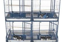 Space Saver Bird Cages / One of the biggest concerns for new and old bird owners alike is finding a bird cage that will fit their space! Parrots need room to spread their wings and play – that can sometimes mean parrot owners find themselves needing a larger bird cage than they originally realized. Our space saver bird cages can help! We carry not only breeder bird cages, and flight cages for large flocks of small birds, but also double and triple bird cages that are stacked, saving space with your living quarters!