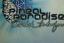 Art & Apparel by Pineal Paradise