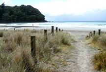 Home - New Zealand