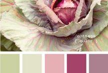 kauniita värejä