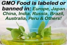 Ban GMO's / GMO foods have been banned in many countries but not the USA. Medical research has shown that they are the cause of many health issues including issues with the digestive system. They are also bad for the environment. The largest provider of GMO's is Monsanto. You have a choice. Don't purchase GMO food. #gmo #nogmo