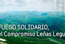 FUEGO SOLIDARIO / FUEGO SOLIDARIO es el programa propio de RSC de la empresa Leñas Legua, S.L. Somos conscientes de la importancia del medio ambiente y de la necesidad de su conservación, por lo que promovemos acciones para conseguir que todos aprendamos a relacionarnos con el entorno de una forma sostenible. Comenzamos por nuestra propia actividad, que está estrechamente relacionada con la ecología a través del cuidado y custodia del territorio de bosques y cultivos.