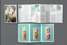 Brochure / Flyers Layout