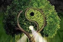 Natura - Verde