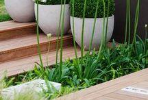 Garden...ideas.