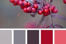 Colour it - Palettes / Colour theory, colour wheel, favourite colour palettes