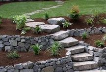 Inspired Landscapes / Ideas and inspiration for your yard.