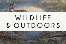 Wild Life and Outdoors