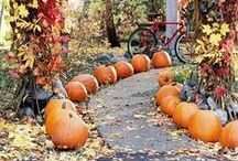 Fall Yard Ideas / Fall is one of the best times to decorate your yard! Here are some of our favorite fall and Halloween yard ideas.