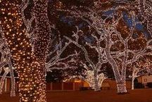 Holiday Landscaping Ideas / Fun and exciting ways to decorate the outside of your home this holiday season!