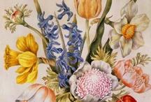 Antique Flower Images