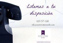 Nosotros / Nuevos artículos que tenemos en tienda. / by Wisteria Decoración Tenerife