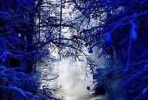 Season:  Winter Color Combos