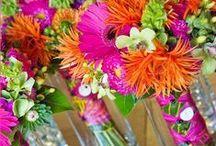 Wedding Colors: Hot Pink, Lime Green, Orange & Red / Couleurs du Mariage: Vert Rose Rouge et Orange