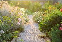 Zahrady - cesty