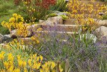 Zahrady - schody