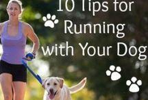 Training Tips