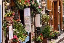 Shops, Restaurants & Hotels / by Shorena Ratiani