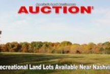 Past Auctions / These are a collection of past Auctions that we have conducted.