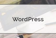 Wordpress / Creating a website using wordpress!
