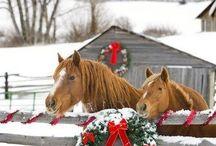 Christmas!!! / by Jessica Mahaffey Ballard
