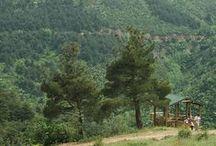 Çevre ve Doğal Yaşam Kenti Nilüfer